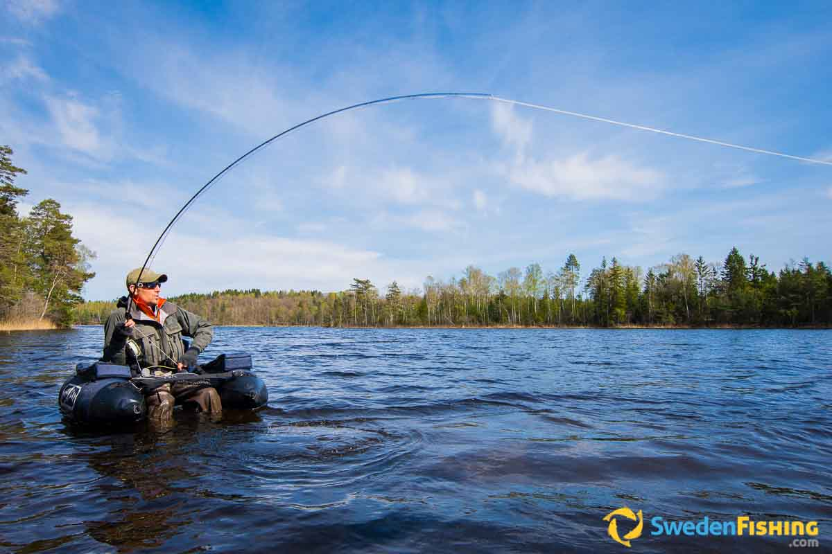 The greatest angling country in europe swedenfishing for Belly boat fishing