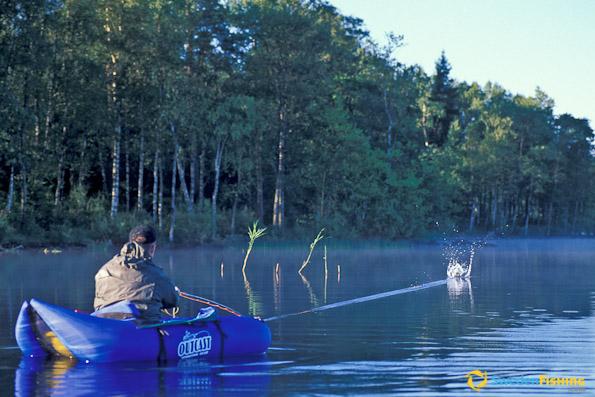 A pesca di tartarughe for Lago per tartarughe