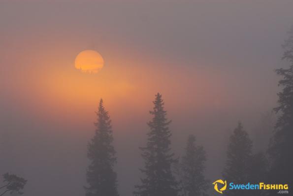 Solnedgång i dimma vid Nedre Dalälven.