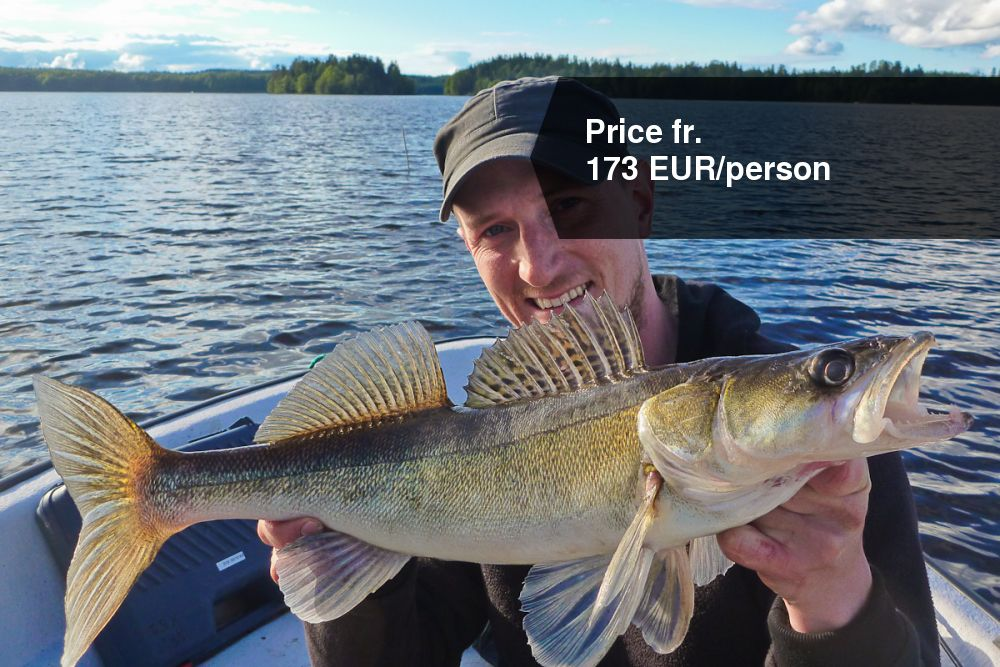Pikeperch in Lake Nätaren, 2 nights | Brovillan